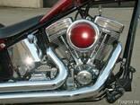 2002 Softail Chopper - photo 2