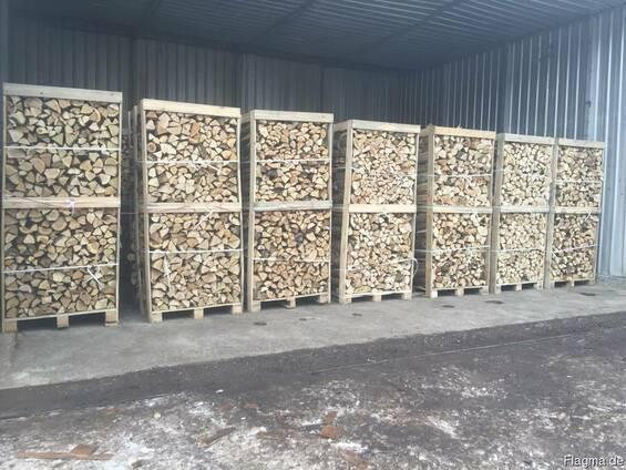 Brennholz aus Hartholz in Form von Baumstämmen