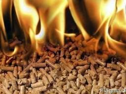 Пеллеты, брикеты топливные