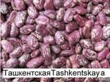 3D фасоль высокого качества из Киргизии - фото 5